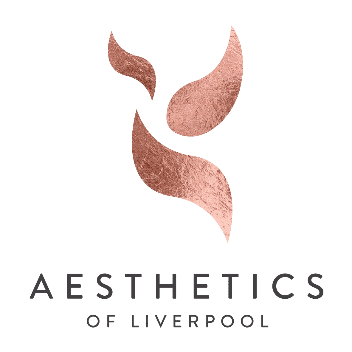 Aesthetics of Liverpool Metallic Logo